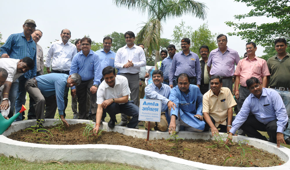 Tata Steel celebrates World Environment Day 2018